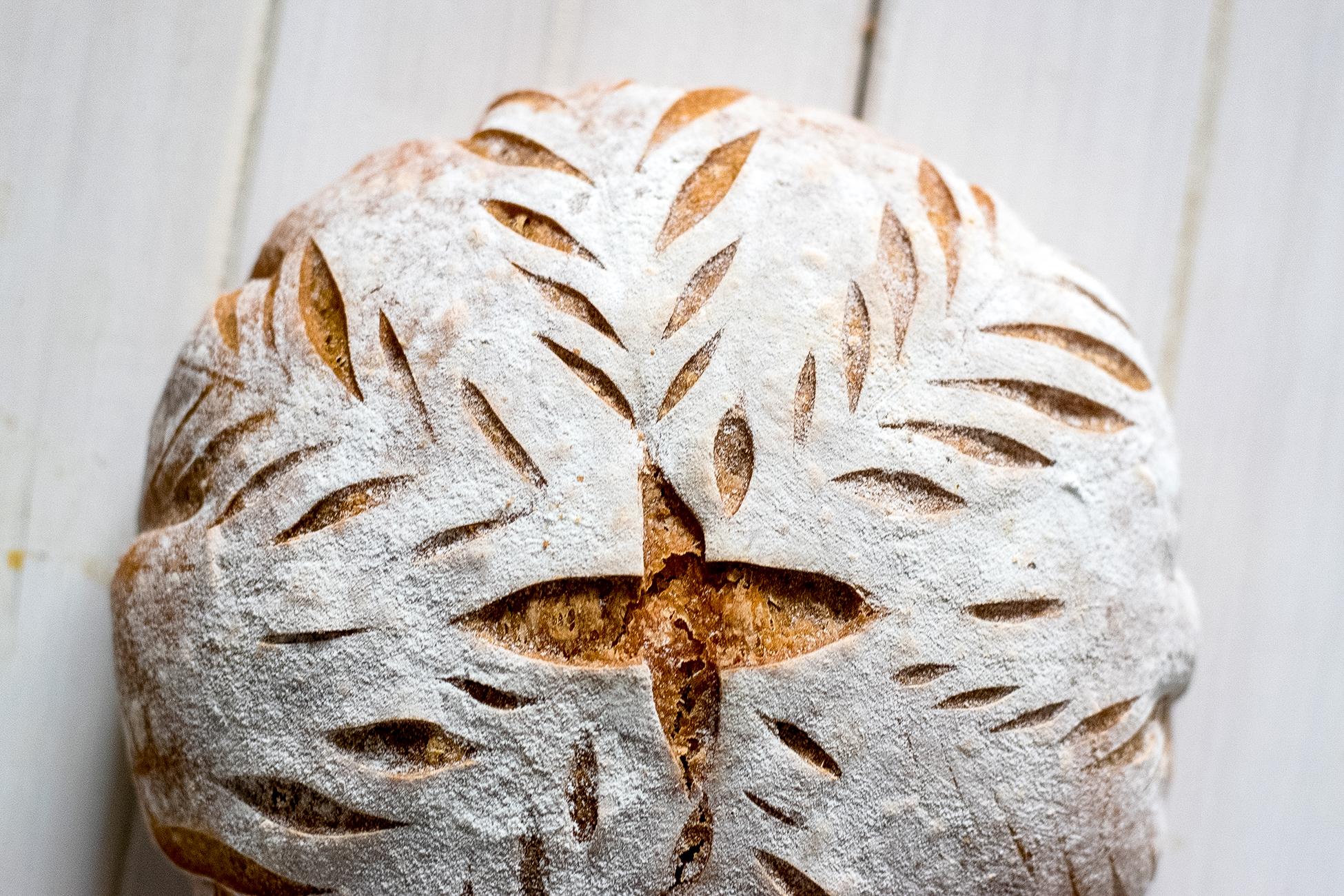 Lievito Mamma Alltagsbrot Header - Rezept für ein einfaches Brot mit Lievito Madre