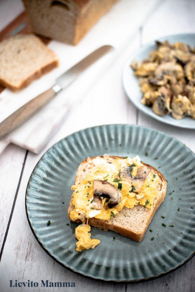 Sandwichbrot mit Lievito Madre schmeckt gut mit Pilzen und Ei